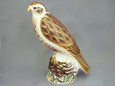 Crown Derby Buzzard